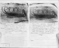 Foto från inventeringsbok (2)